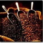 Kterou kávu si vybrat?