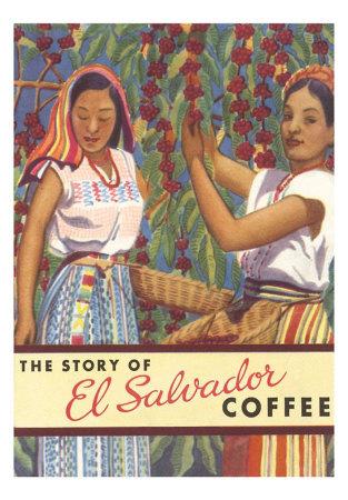 salvadorská káva